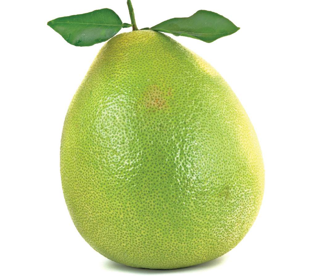 frutto pomelo